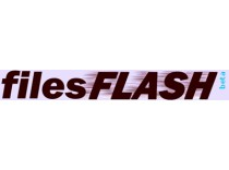 Filesflash 1 Month Premium Account
